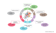 Ion Channels and Cancer